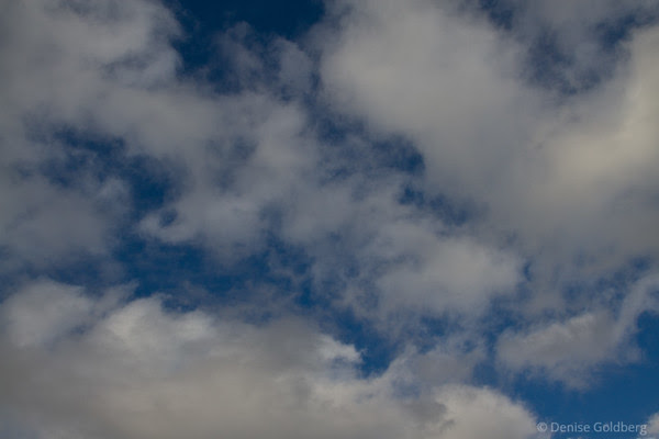 blue sky painted with white clouds