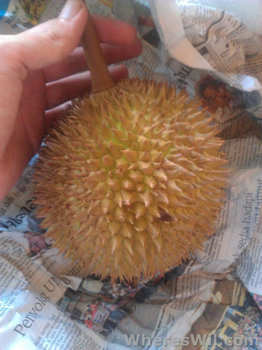 Fruit From Around The World - Durian