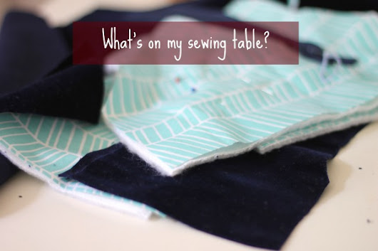 What's on my sewing table? Eine Kamera-Tasche | Eda Lindgren