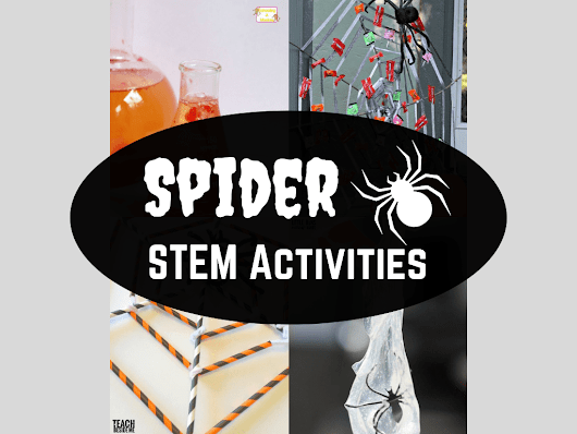 16 Spider STEM Activities and Science Experiments - From Engineer to Stay at Home Mom