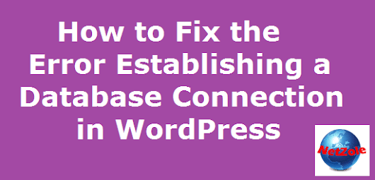 How to Fix the Error Establishing a Database Connection in WordPress | Netzole