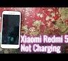 Hp Xiaomi Mati Total Tidak Bisa Di Charge - Ketahui 14+ Cara Mengatasi Hp Xiaomi Mati Saat Di Cas ... / We did not find results for: