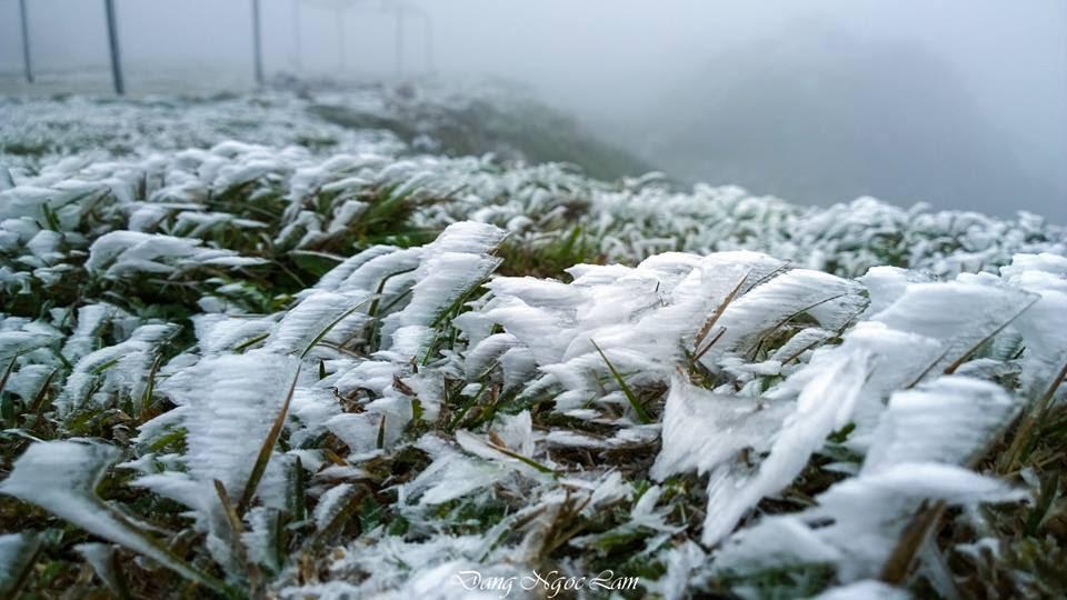 băng tuyết, Sa Pa, Mẫu Sơn, tuyết rơi Sa Pa, tuyết rơi Mẫu Sơn, tuyết rơi 2016