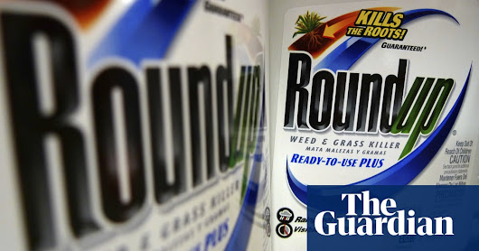 Weedkiller 'raises risk of non-Hodgkin lymphoma by 41%' | Business | The Guardian