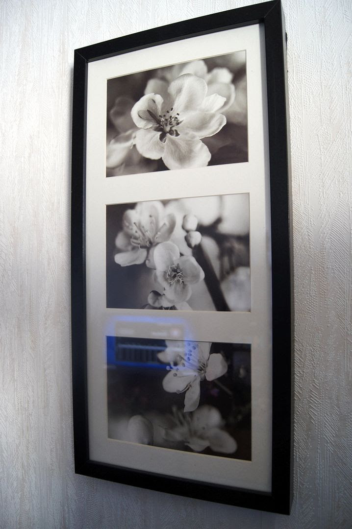 photo 8fa59eaa-c1ae-4e65-bda3-752ad9d4fe5c.jpg