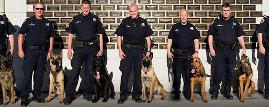 police k9s for sale • Check Out The Website...