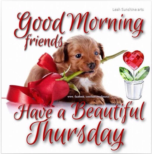 Good Morning Thursday Friends Quote Pictures Photos And Images For