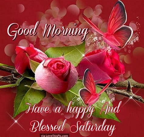 Good Morning Have A Happy And Blessed Saturday Pictures