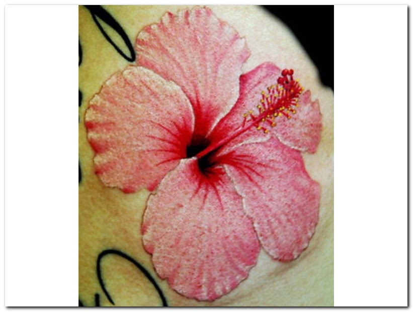 3d Tattoos Designs Hibiscus Flower Tattoo Tattoomagz