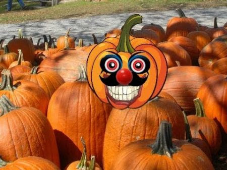 Best pumpkin patches and corn mazes near Miami and Ft. Lauderdale 2016