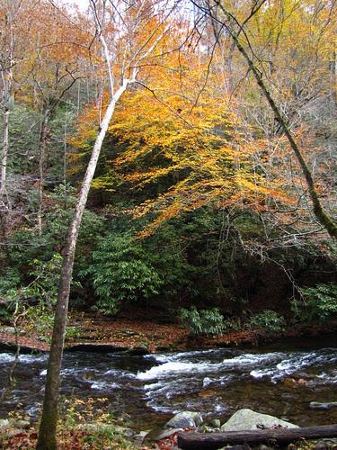 IMG_6655_Deep_Creek_Trail
