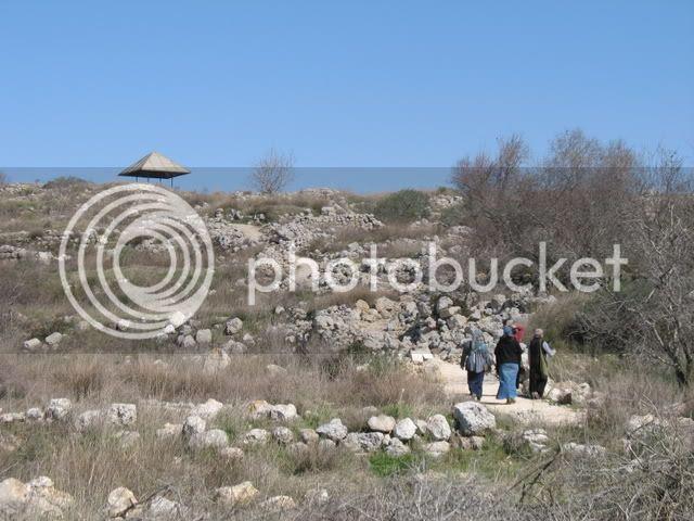 Tel Shiloh 6