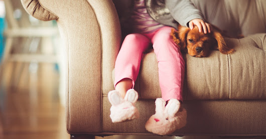 How To Keep Your Pets Happy When You're Busy With Your Kid, According To Experts