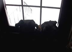 LolaTut_door_11211