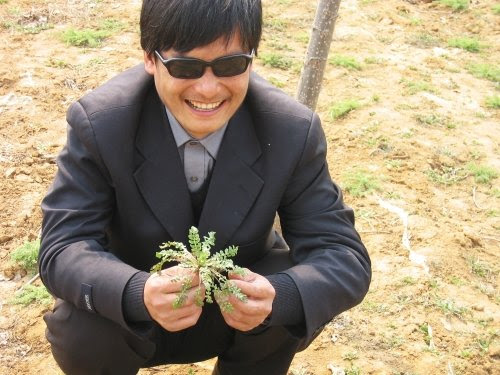 Rights activists say Chen Guangcheng slipped out of his home in Dongshigu town in Shandong province on Sunday photo