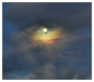 hawaiian moonlight no.3