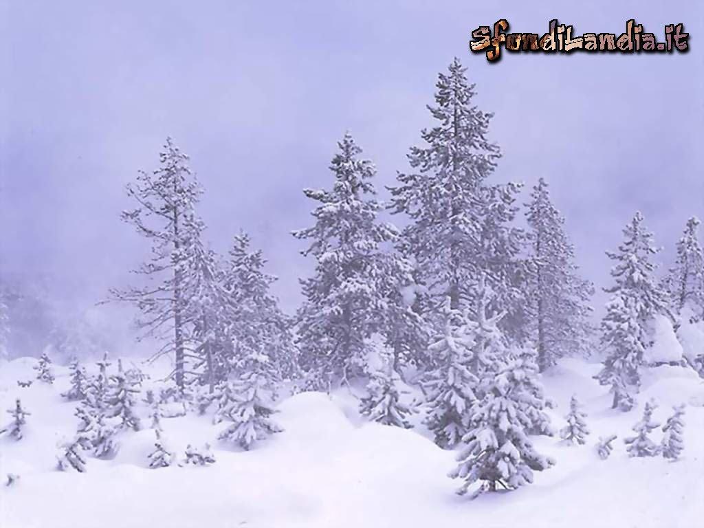 Latest hd immagini invernali per sfondo desktop sfondo for Sfondi paesaggi invernali per desktop