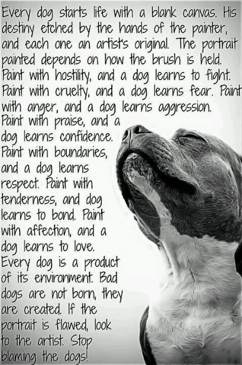 Bully Love Dog Quotes. QuotesGram