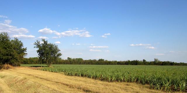 Oklahoma-03