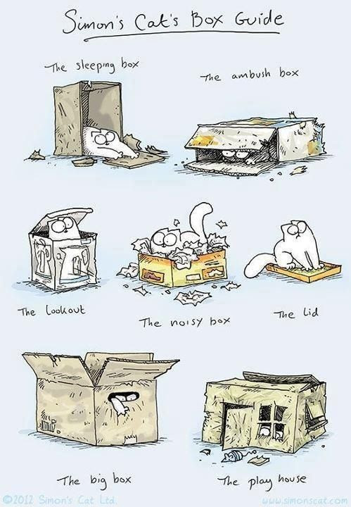 Simon's cat, the box guide