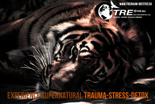 Was ist und wie wirkt TRE® (Dr. David Berceli) - Tension & Trauma Releasing Exercises - freiraum-institut.ch