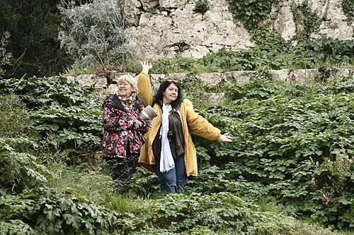 dans la forêt de SAinte-Marguerite.jpg