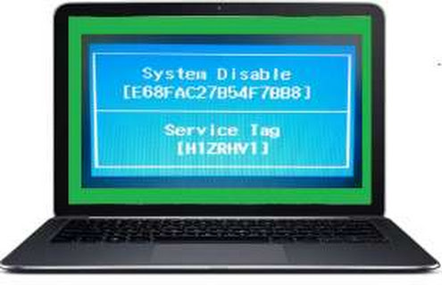 Master Password For Dell System Disable & Enter Current Password