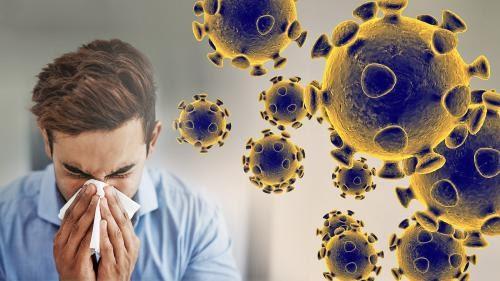 coronavirus | EthemBlog