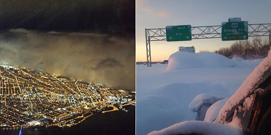Otherworldly Photos Of Buffalo Buried In Snow