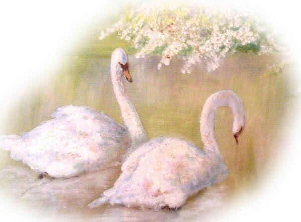 Gran's Swans