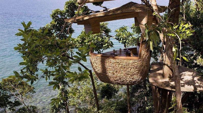 Ресторан на дереве в Таиланде. Фото