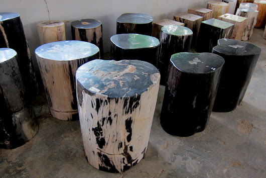 Fossil Wood Table - Rustic - Accent And Garden Stools - Other - by IndoGemstone