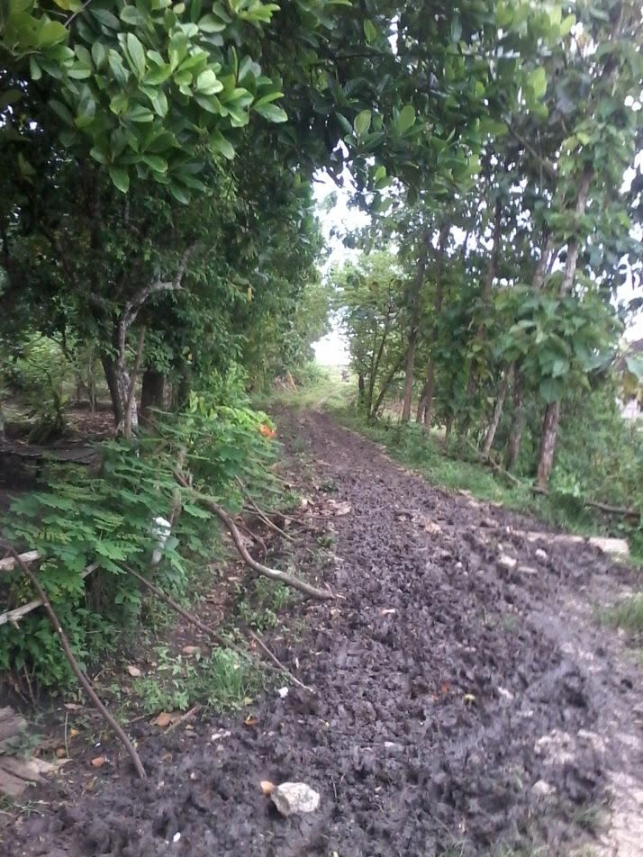 Jalan Lingkungan Dengan Tanah Dasar Lumpur