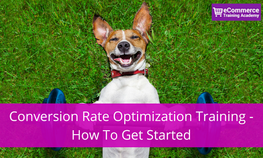 Conversion Rate Optimization Training - How I Got Started