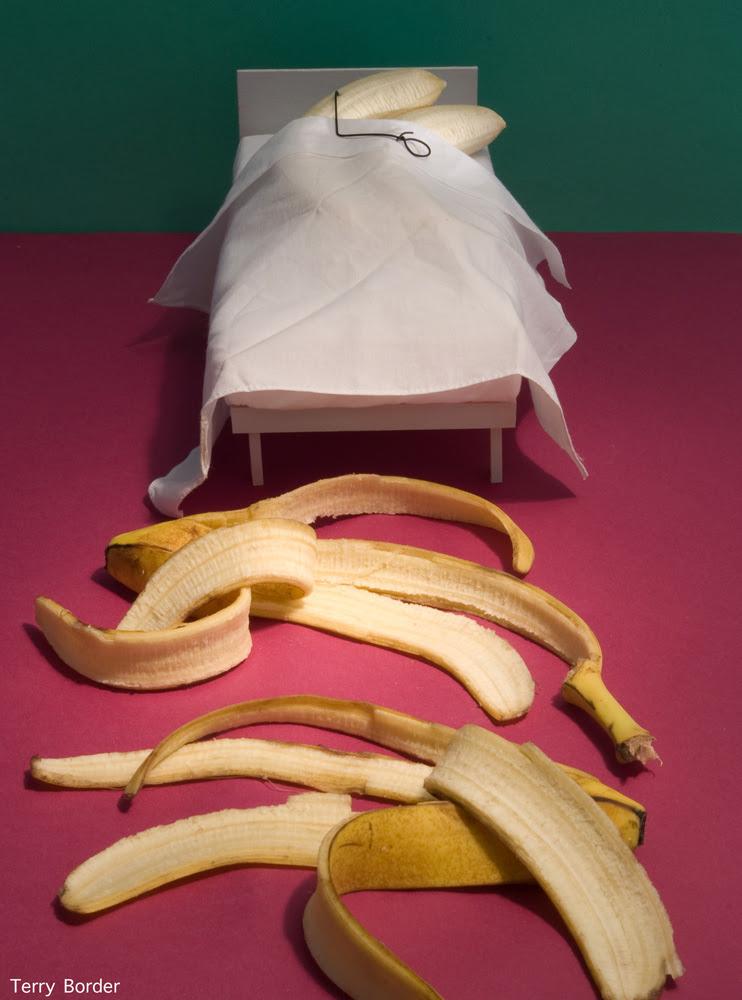 Funny bento objects by Terry Border - banana sex
