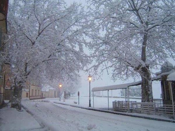neige-algerie-janvier2016