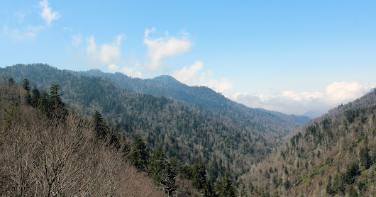 8 Spots to Explore in The Great Smoky Mountains National Park