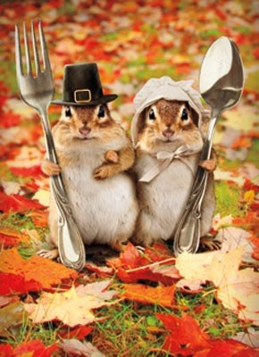 We heard there was pecan pie...   :)
