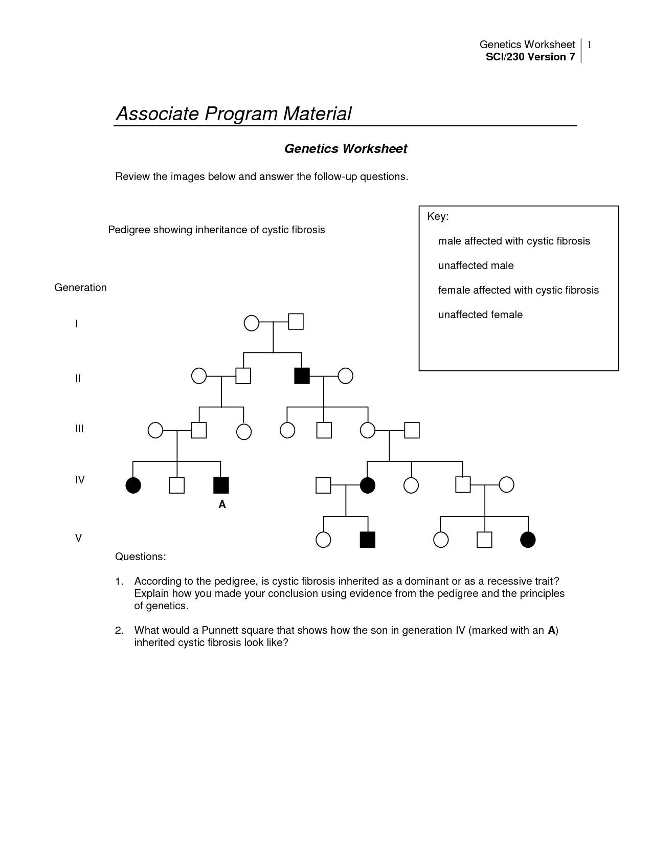 32 Genetics Pedigree Worksheet Answers - Worksheet ...