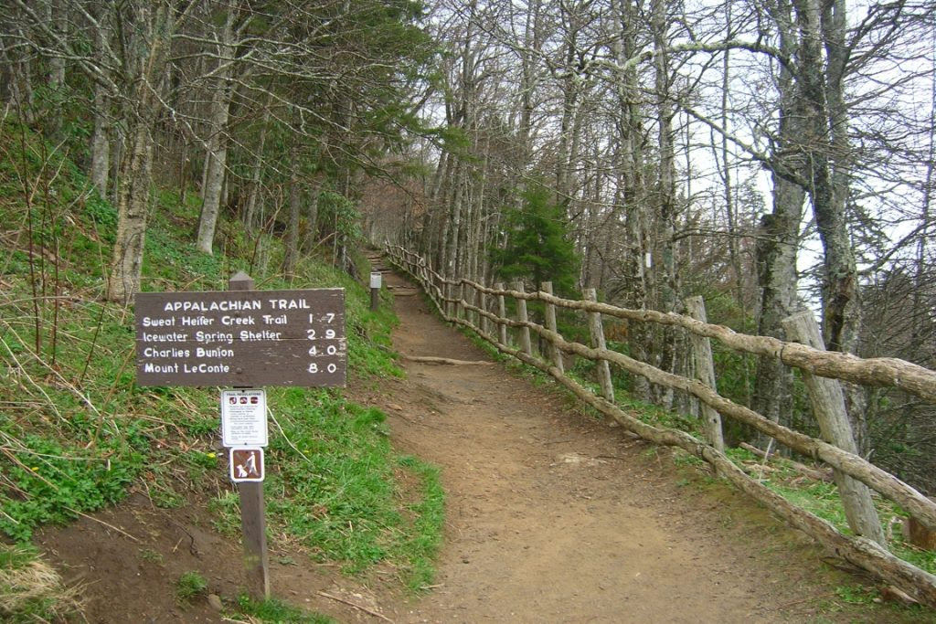 Trecho da Appalachian Trail. Foto: Wikipédia.