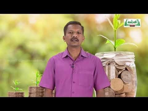 கலைத்தொழில் பழகு Std  11 Accountancy முதலின மற்றும் வருவாயின நடவடிக்கைகள் Kalvi  TV