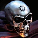 Alchemy Gothic Metallic Silver Gold Canine Tooth Skull Home Decor - Medium