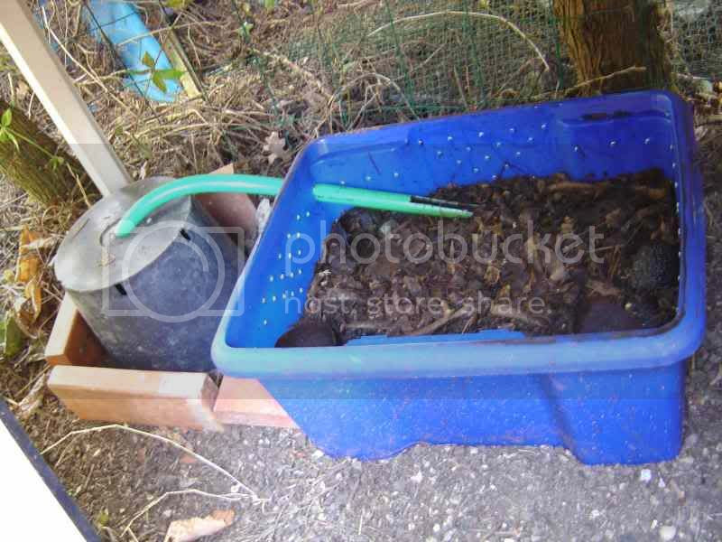 Do It Yourself Bsf Bucket Bio Composter Black Soldier Fly Blog