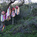 PhilipMagee_20121228_c28868