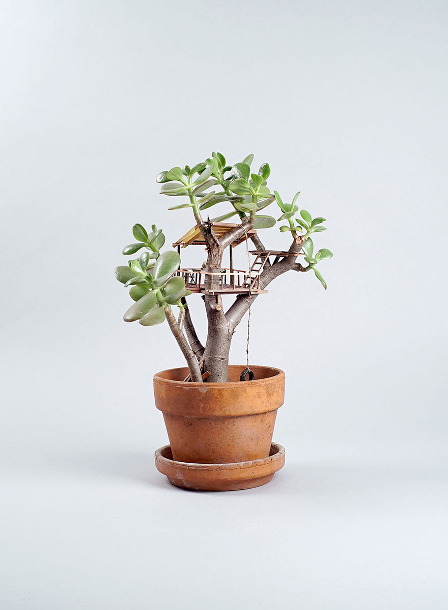casitas-diminutas-en-las-plantas-jedediah-corwyn (3)
