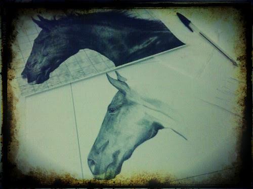 WP Horse by JMADesigner