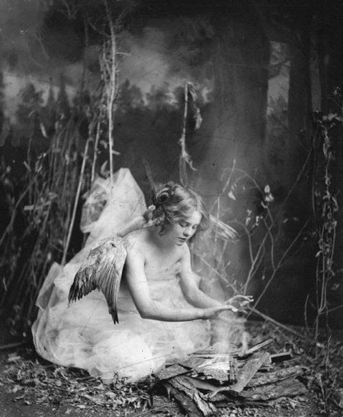I find fairies attractive, is that wrong? « Athenian Mercury
