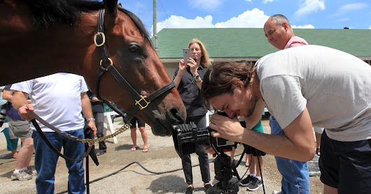 Gallery | Vogue photographs American Pharoah at Churchill Downs