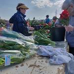 Etampes/Etréchy : dernier week-end de vente pour les Tulipes de l'Espoir
