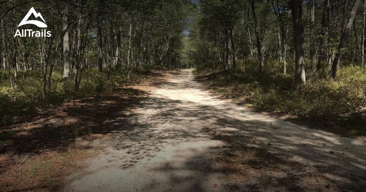Best Trails In Brookhaven State Park New York Photos